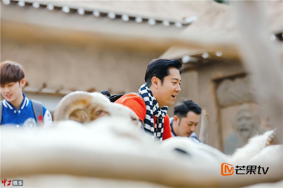 蔡国庆为儿子徒手捕羊 爸爸去哪儿4 实力诠释父爱大过天